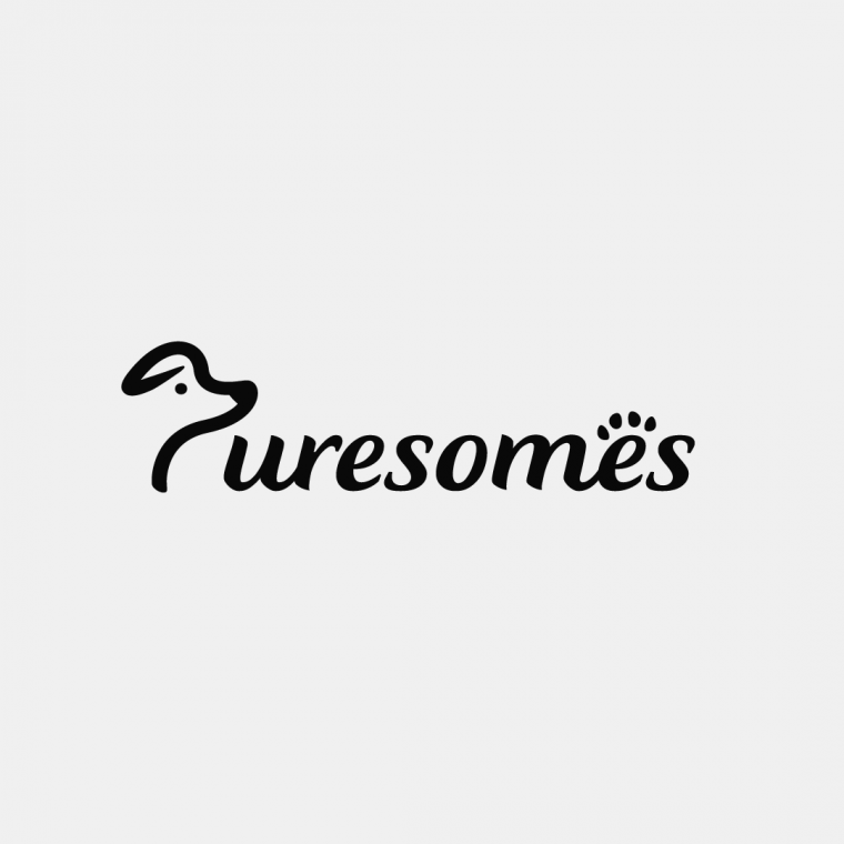 Puresomes Logo Design